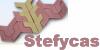 STEFYCAS IMPEX  - pavaje - dale si borduri - materiale de constructii