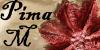 PRIMA M - perdele si draperii - storuri si accesorii - stofe si cuverturi