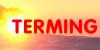 TERMING - instalatii termice - pompe caldura - centrale termice - panouri solare