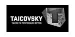 TAICOVSKY - Carotare diamantată și tăiere fir diamantat