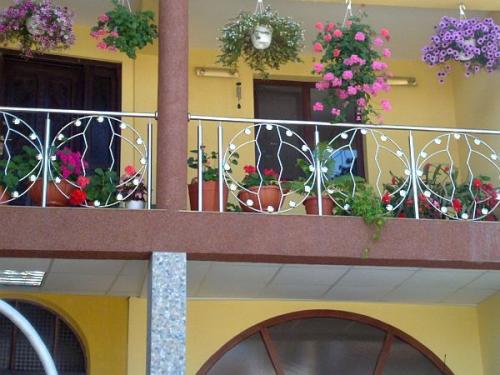 Balustrade inox cu model pentru balcon